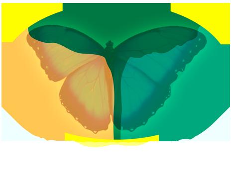 Búzios Espiritualidade Films